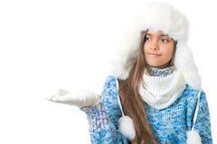 Descuentos del invierno Lugar para el texto Fotografía de archivo libre de regalías