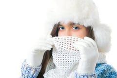Descuentos del invierno Lugar para el texto Foto de archivo libre de regalías