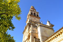 Desde el patio de los naranjos. A bright day for the Patio de los Naranjos, inside the Mosque of Cordoba, Spain, the tower is about 50 meters inside the old Stock Photo