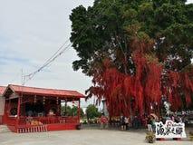 Deseando a mensajes del árbol el buen árbol del rojo de los rezos Fotos de archivo