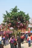 Desejando a árvore Imagens de Stock