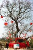 Desejando a árvore fotografia de stock royalty free