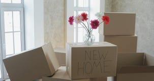 Desembalando caixas em coisas home e pondo novas afastado na cozinha, caixas de cartão grandes na casa nova Mover-se para um novo video estoque