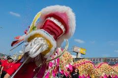 Desempenho chinês do dragão Imagens de Stock