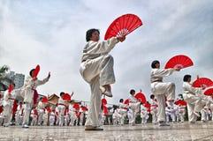 Desempenho chinês do fu do kung Fotos de Stock Royalty Free