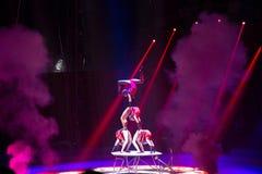 Desempenho da equipe do circo na fase fotografia de stock royalty free