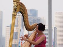 Desempenho da harpa Fotografia de Stock