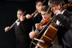 Desempenho da orquestra de corda Imagem de Stock Royalty Free