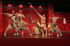 Desempenho das artes marciais imagem de stock