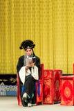 Desempenho de Opera de Pequim Imagens de Stock