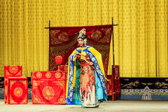 Desempenho de Opera de Pequim Foto de Stock