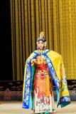 Desempenho de Opera de Pequim Fotos de Stock