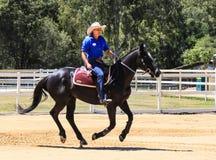 Desempenho equestre na exploração agrícola australiana do país do paraíso, Gold Coast, Austrália Fotos de Stock