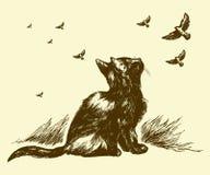 Desenhar do gato e dos pássaros Foto de Stock Royalty Free