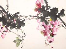 Desenho chinês da uva da tinta ilustração stock