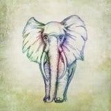 Desenho colorido do elefante Imagem de Stock