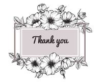 Desenho cor-de-rosa selvagem e esboço da flor do quadro da flor Foto de Stock
