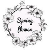 Desenho cor-de-rosa selvagem e esboço da flor do quadro da flor Fotos de Stock Royalty Free