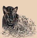 Desenho da aquarela de uma pantera preta, quebrando acima em partes pequenas ilustração royalty free