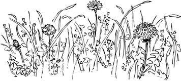 Desenho da flor ilustração royalty free