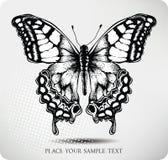 Desenho da mão da borboleta. Vetor Imagem de Stock Royalty Free