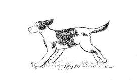 Desenho da mão do cão running Imagem de Stock Royalty Free