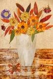 Desenho das folhas secadas da queda das plantas e dos ramos Fotos de Stock