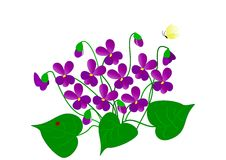 Desenho das violetas imagem de stock royalty free