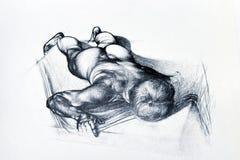 Desenho de lápis do corpo do homem fotos de stock royalty free