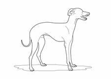 Desenho de um cão bonito Foto de Stock Royalty Free