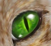 Desenho de um olho de gato ilustração royalty free