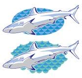 Desenho de um tubarão fotografia de stock royalty free