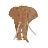 Desenho do elefante ilustração stock
