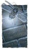 Desenho do Firefly Fotografia de Stock Royalty Free