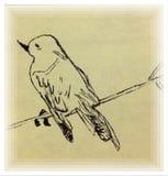 Desenho do pardal Imagens de Stock