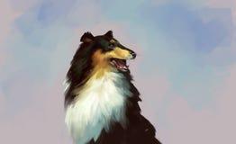 Desenho do retrato da collie Cão imagem de stock