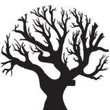 Desenho do vetor da árvore Fotos de Stock Royalty Free