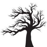 Desenho do vetor da árvore Foto de Stock