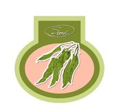 Desenho do vetor da azeda verde frondosa Imagens de Stock