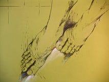 Desenho dos pés da mulher Imagens de Stock Royalty Free