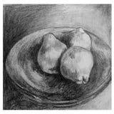 Desenho imóvel artístico da vida executado no lápis foto de stock