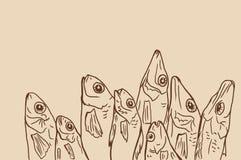 Desenho linear peixes secados Imagem de Stock