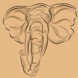 Desenho principal do elefante Fotos de Stock Royalty Free