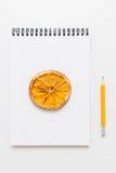 Desenho secado do limão no bloco de desenho e no lápis fotografia de stock royalty free