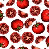 Desenho sem emenda do teste padrão do tomate do vetor tomates e partes cortadas vegetal Fotos de Stock