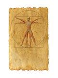 Desenho vitruvian conceptual do corpo humano no fundo de papel velho Fotos de Stock