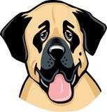 Desenhos animados anatólios do cão de Sheperd Imagem de Stock Royalty Free