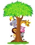 Desenhos animados animais Imagens de Stock