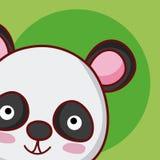 Desenhos animados animais bonitos do urso de panda Fotos de Stock Royalty Free