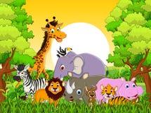 Desenhos animados animais bonitos dos animais selvagens com fundo da floresta Fotos de Stock Royalty Free
